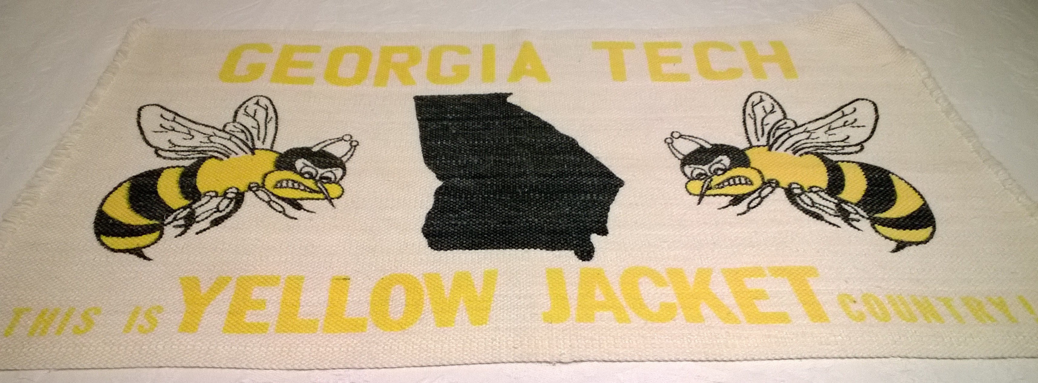 This is Yellow Jacket Country.jpg